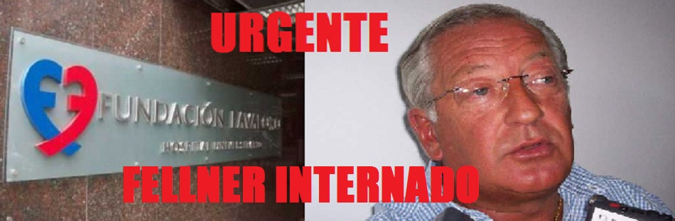 fellner internado