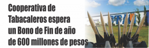 notinor. misiles para bajar al fpv