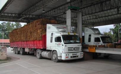 camiones-transporte-carga