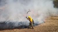 los-efectivos-de-la-brigada-de-incendios-forestales-combaten-focos-igneos-de-pequena-y-mediana-escala_20315