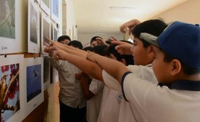 Aves escuelas (2)