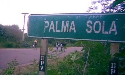 Palma Sola