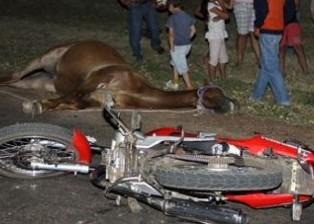 accidente caballo1